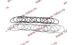 Кольцо уплотнительное гильзы цилиндра (комплект 12 тонких и 12 толстых) двигатель TD226B6G
